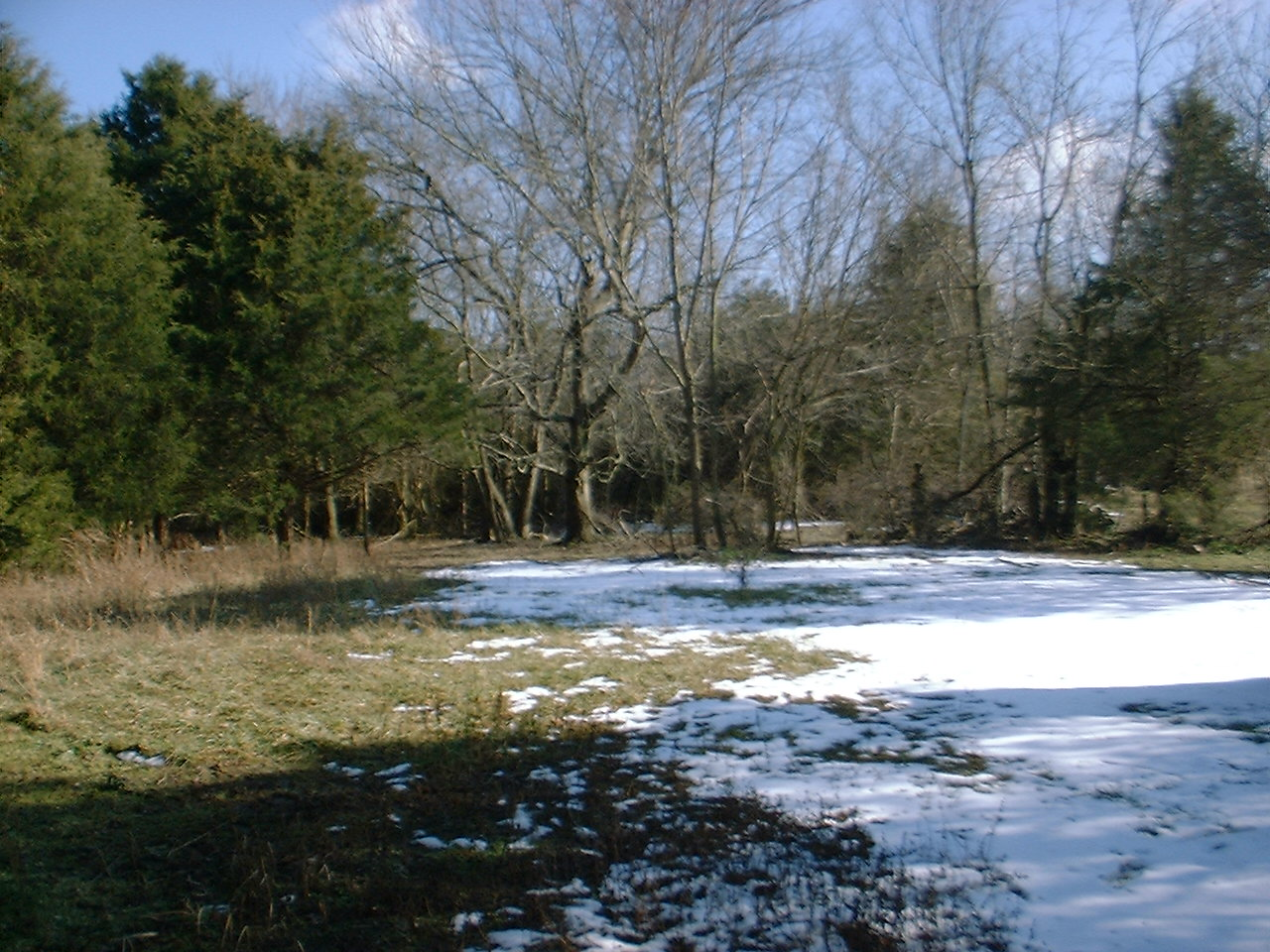 Luray, VA 22835, Page County Property FSBO